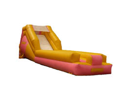Slip n Slide water inflatable rental.  Kids absolutely love this!  There is non stop laughter as kids slip across 28 feet of splashing fun.  Rent a Inflatable water slide or slip n slide.